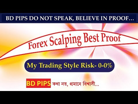 world-king-of-forex-scalping-(fx-account-management-service)-[bd-pips]