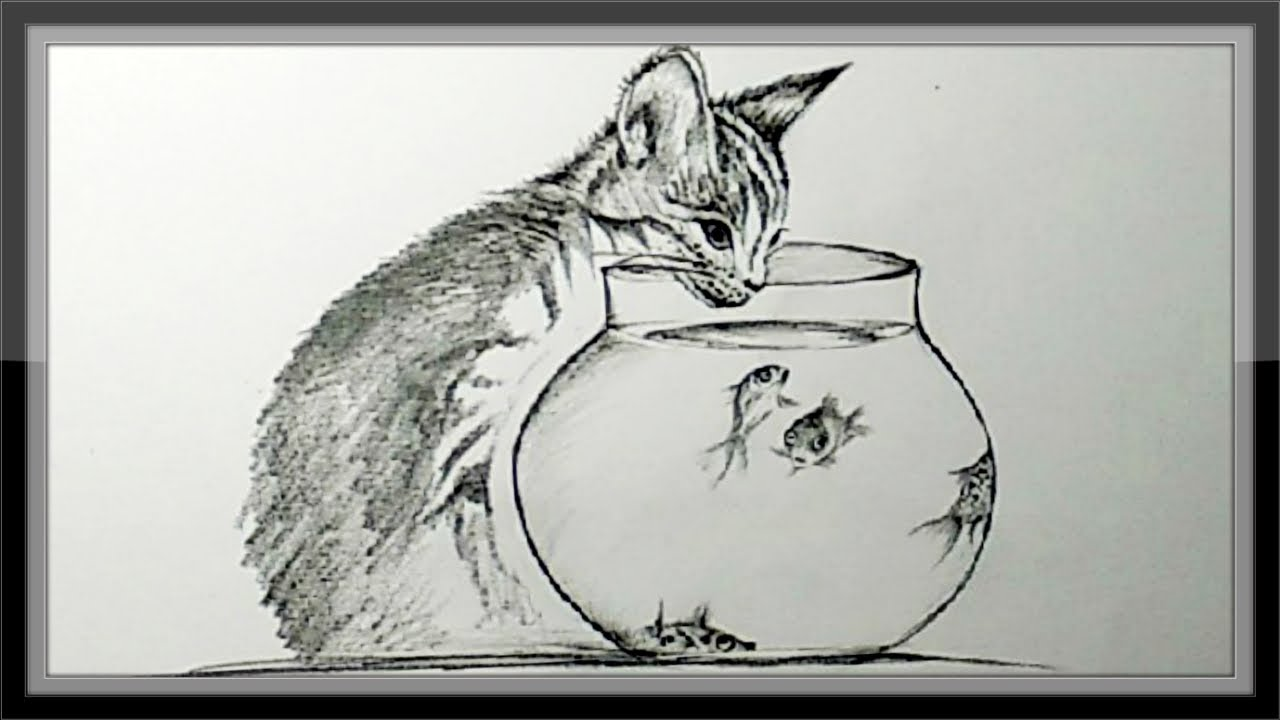 How to draw a cat and aquarium step by step in pencil