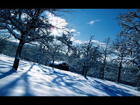Interesting winter pictures part 25