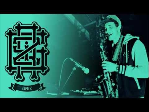 GRiZ - 07- Mr B ft. Dominic Lalli (HQ)