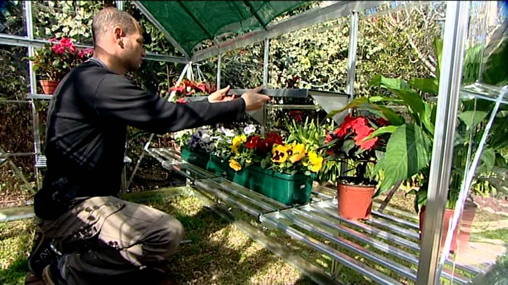 Palram Snap - Grow 8' x 16' Hobby Greenhouse - Palram Snap