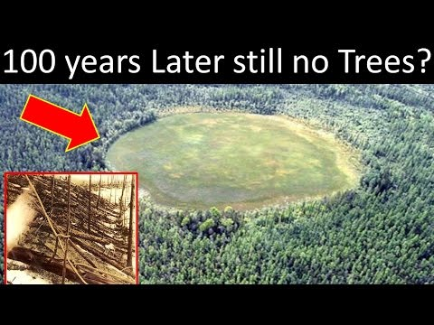 What Crashed During The Tunguska Event?
