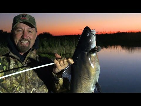 The Hunt For Big Blue Catfish... Arrows And Blood
