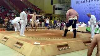 Ireland vs Russia (sumo)
