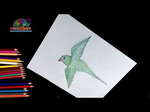 how-for-kids-|-how-to-draw-a-parrot-bird-drawing-for-kids