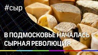 В Подмосковье началась сырная революция