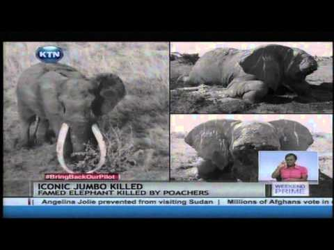 "Kenya's iconic elephant ""Satao"" is dead in Tsavo"
