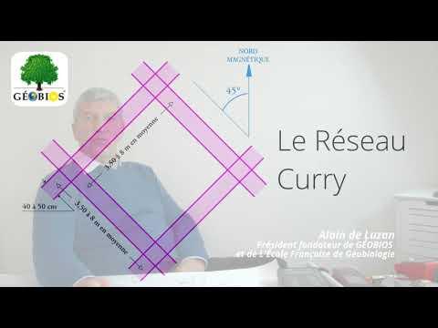 Réseau Hartmann, Réseau Curry, ondes telluriques, réseaux géobiologiques…