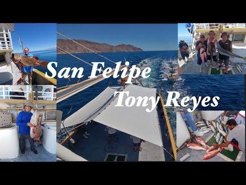 2018 San Felipe Fishing Trip [TONY REYES]