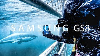 Logan Dodds - Shark Bait. Samsung GS8 | GoPro Hero 5 |