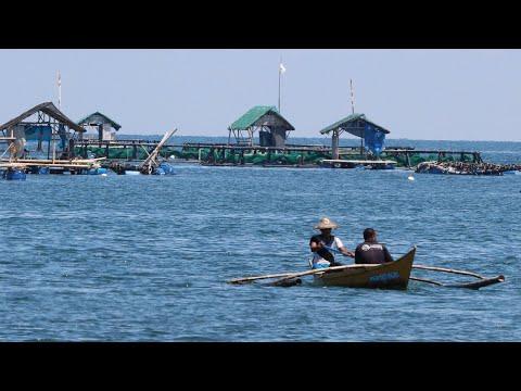 Paano Magsimula Ng Bangus Cage Business Part 1 | TatehTV Episode 48