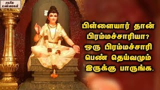 There Is Also A Bacholerette Goddess || Brahmacharini devi || Unknown Facts Tamil