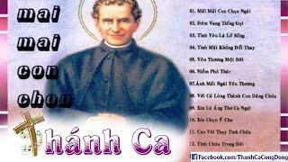 Album Mãi Mãi Con Chọn Ngài - Thánh Ca Dâng Hiến