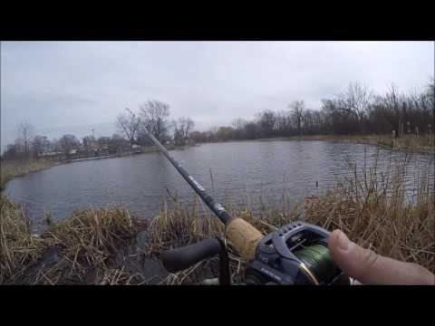 Pond hopping around Dupage county