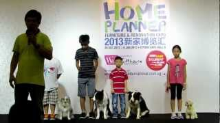 "Dog Performance Conducted By ""star Dog"" Trainer Patrick Wong广告明星狗精彩演出"