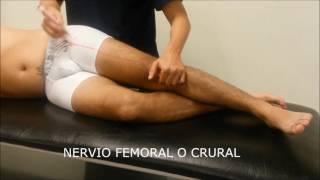 Del causas de femoral lesion nervio