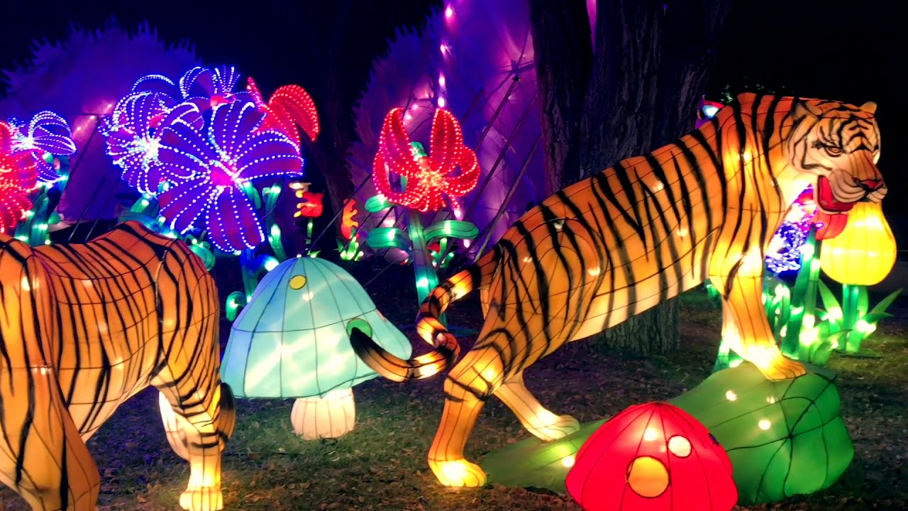chinese lantern festival albuquerque new mexico youtube. Black Bedroom Furniture Sets. Home Design Ideas