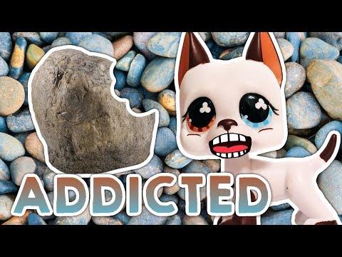 LPS: Addicted to Eating Rocks! My Strange Addiction: Episode 35