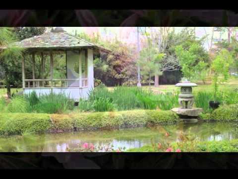 Japanese Garden Memorial Hermann Park Houston TX