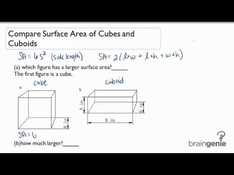 1.4.3 Compare Surface Area of Cubes and Cuboids