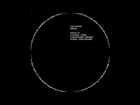 Voiski - A Star In Your Head