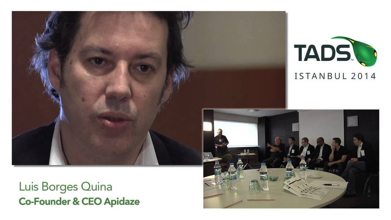 TADSummit 2014 - Interview: Luis Borges Quina (Apidaze)