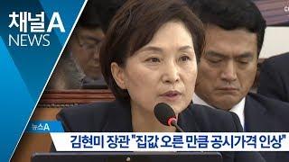 """김현미 장관 """"집값 오른 만큼 공시가격도 인상""""   뉴스A"""