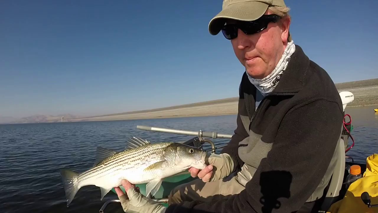 Striper fishing san luis reservoir november 2015 youtube for San luis reservoir fishing