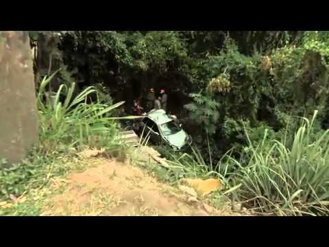 Motorista Cai De Viaduto E Morre No RJ