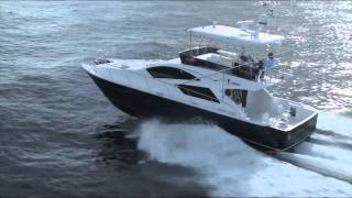 Mares Catamaran 45 Ft Yacht Fish