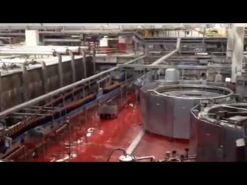 stabilimento birra peroni di roma youtube