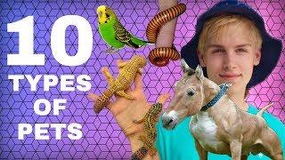 Feeding 10 Types of Animals! (EXOTIC PETS)