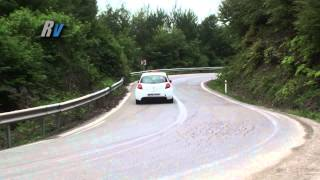 2014 Kocaeli Rally / Ali Gülan - Maria Gülan / Renault Clio R3