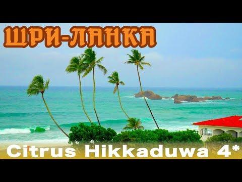 Шри-Ланка, Хиккадува | Отель Citrus Hikkaduwa 4*