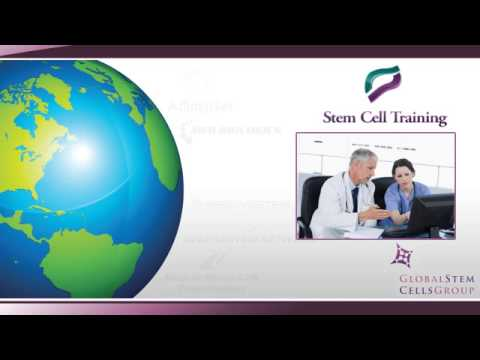 The Global Stem Cells Group
