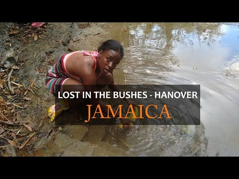 Lost Again! - in the Bushes - Hanover, Jamaica | 14 parishes in 14 Days