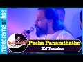 Pacha Panamthathe, Nottam | KJ Yesudas | Jayaragangal | Manorama Online
