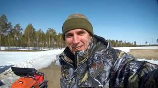 Охота на медведя весной видео 2020 года