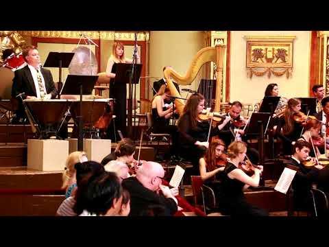 Peter Ritzen conducts New Cosmos Philharmonic 2017 in Vienna