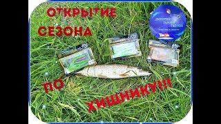 Открытие сезона рыбалки по хищнику
