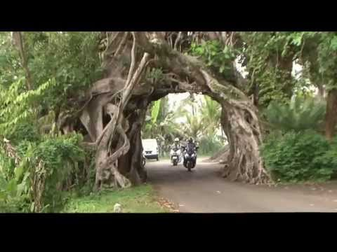 Bali Balo Motor & Tours - Documentary