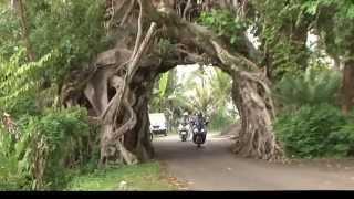 bali balo motor tours documentary scooter sur bali sur les routes d indonsie
