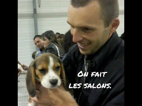 ON FAIT LES SALONS