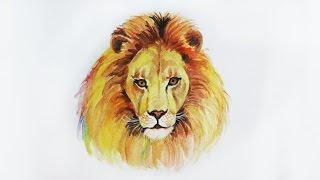 Уроки рисования. Как нарисовать льва акварелью Erich Krause how to draw a lion(Скачайте видео урок
