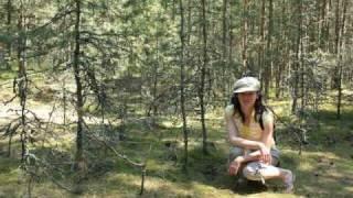 Путешествие в Калининград(, 2009-08-23T17:46:34.000Z)