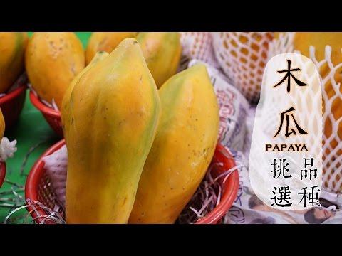 【夏】木瓜的挑選方法