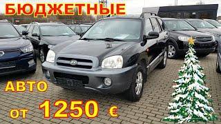 Бюджетные авто от 1250 евро, авто из Литвы цены на январь.