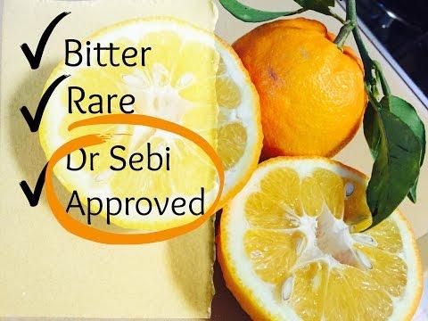 Dr. Sebi approved Seville Oranges!