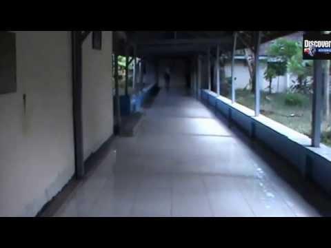Sekolah TerAngker se Indonesia No 2 Banyuwangi Smada