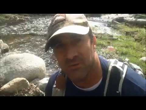 Southern California wild trout fly fishing in San Bernardino Mountains